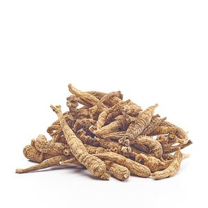 American Ginseng Long Branch