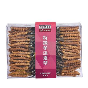 Wild Cordyceps - 3 Star Unique Grade